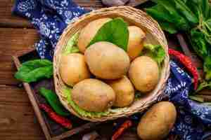 Read more about the article How Long Have Potatoes Been in China